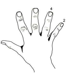 finger-subnetting-sample2