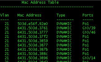 mac-address-table
