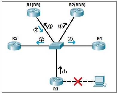OSPF DR and BDR